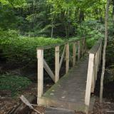 Image of small and narrow  wooden footbridge in forest