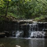 Image of water rushing through rocky waterfall into pond below with surrounding forest
