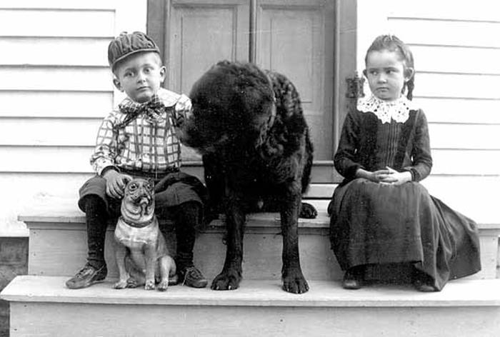 Black and white image of one boy and one girl sitting on a stoop with a pug dog and a black labrador dog