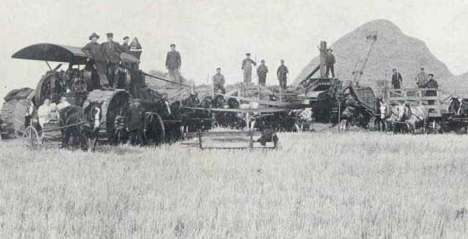 Black and white photo of men standing on and around tractors with horses and a pile of grain in the back